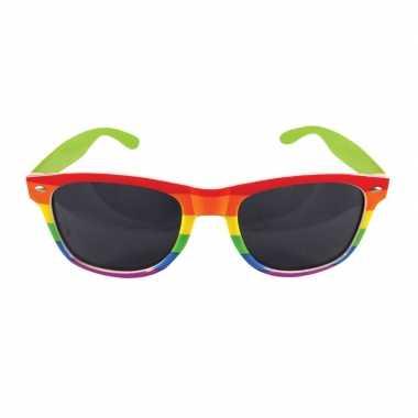 Vintage 2x regenboog feest brillen voor volwassenen