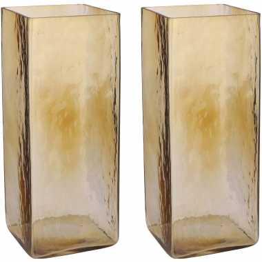 Vintage set van 2x stuks transparante/lichtbruine accubak vaas/vazen van glas 14 x 14 x 35 cm