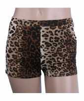Vintage luipaard print hotpants voor dames