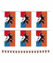 Vintage set van 2x stuks holland oranje vlaggenlijnen met leeuw 10 meter